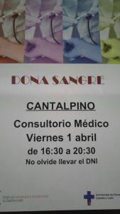 dona_sangre_cantalpino
