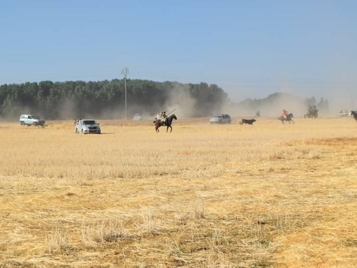 encierro a caballo 2016