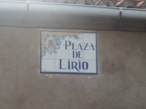 plaza-lirio-1
