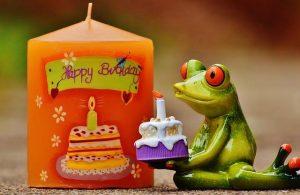 Feliz cumpleaños, Leonis